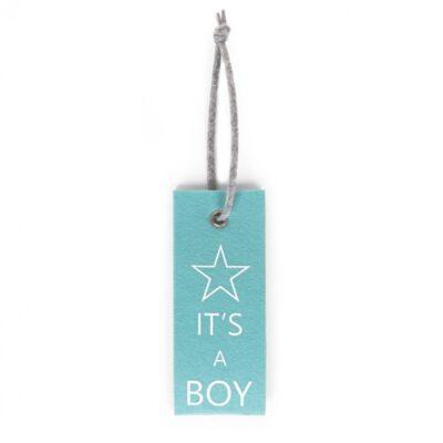 Vildist mint blue uksesilt IT'S A BOY